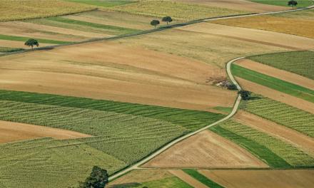 Szansa dla ochrony gospodarstw rolnych przed egzekucją